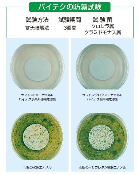 バイテク藻08